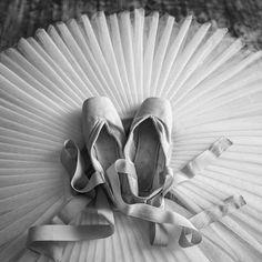 Photo by Darian Volkova Russian Ballet Photographer www.darianvolkova.com    #mariinsky #ballet #vaganova #vaganovaballet #balletstars #balletpointeshoes #balletpointe  #Gaynorminden #grishko #bloch #balletschool #balletphoto #balletpicture #balletdancer #balletclass #balletlife #balletlife #balletfeet #balletbeautiful #balletzaida #balletphotographer #balletphotography #darianvolkova #printballet #printinterier #fineartprint