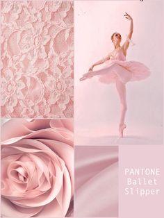 PANTONE Ballet Slipper