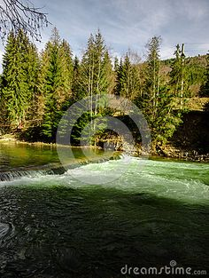 Photo about Aries river in Carphatian Mountains. Image of dubova, cork, arieseni - 66775601 Aries, Croatia, Golf Courses, Stock Photos, Mountains, Pictures, Image, Photos, Aries Zodiac