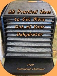 23 Practical Ideas to Get More Out of Your Dehydrator - Homestead Chronicles