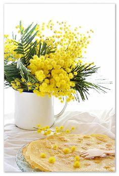 Crepes dolci ai fiori di mimosa per la festa della donna Yellow Sunflower, Yellow Flowers, Daffodils, Tulips, Sensitive Plant, Yellow Cups, Bouquet, Farmhouse Interior, Rose Cottage