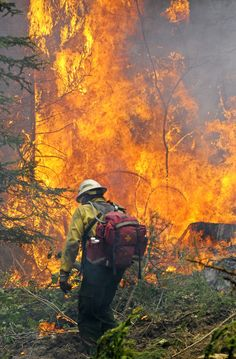 Pray for all those involved in fighting fires across the US & here in Oregon. Our 5 Fire complexes in Josephine County & Douglas County have been challenged in the last day with wind changes that gave increased the fire movement. The percentage of containment is from 0% to 15%, depending on complex location, in the last 5 days. Please continue to pray for safety & God's protection for all involved.
