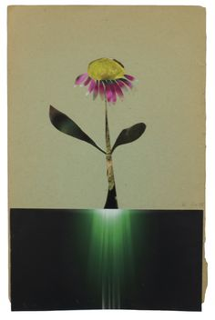 Anke Roder 'Echinacea' 2015 collage 27,5 x 17,5 cm