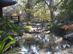 Japanese garden at Descanso Gardens - I worked at this lovely locale many moons ago.