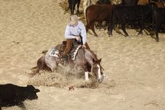 Jesse Lennox cutting horses...an awesome picture!