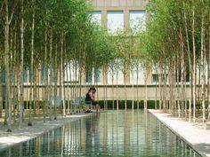 Novartis Headquarters by PWP Landscape Architecture