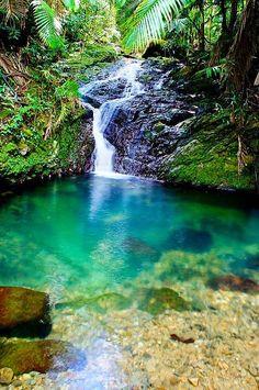 Bosque Toro Negro, Puerto Rico looks so peaceful! Puerto Rico Island, Puerto Rico Trip, San Juan Puerto Rico, Beautiful Islands, Beautiful Places, Places To Travel, Places To See, Puerto Rican Culture, Enchanted Island