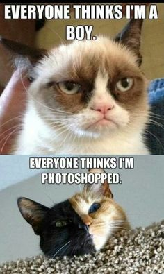 Everyone thinks......