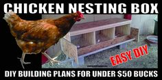 How To Build a Chicken Nesting Box – Easy DIY Step By Step Plans Pictures