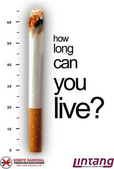 Compara el cigarro con la duración de nuestra vida porque cuando fumas el cigarrillo se va consumiendo y al poner la longitud de vida quiere decir que contra mas tabaco consumas antes vas a consumir tu vida. Y como fumar o no es nuestra decisión, por eso pregunta ' ¿cómo de larga es tu vida? '