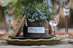 Herbs herbs herbs! 3 kinds in 1 pot.