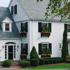 House exterior remodel before and after black shutters Ideas White Exterior Houses, Exterior House Colors, White Houses, Exterior Design, Exterior Paint, Fall Window Boxes, Window Box Flowers, Flower Boxes, Christmas Window Boxes
