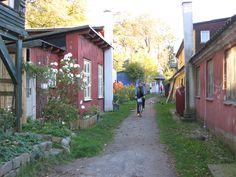 Freetown Christiania. Copenhagen, Denmark.  #freetownchristiania #Copenhagen #Denmark