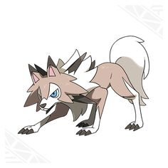 When Rockruff is bathed in profuse amounts of solar energy, it evolves into its Midday Form. In the world of Pokémon Sun, Solgaleo's influence causes Rockruff to evolve into this form.-Pokemon Sun and Moon website. Imma get a Midday Form Lycanroc its so cool!