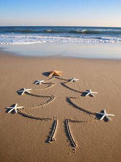Happy Christmas from California!