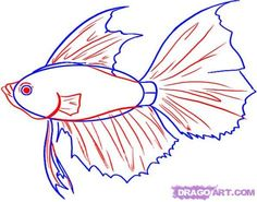 How To Draw Fish Step By Step Animals 29 Best Ideas Fish Drawings, Disney Drawings, Oven Pork Chops, Drawn Fish, How To Cook Zucchini, How To Curl Your Hair, Good Things, Disney Characters, Animals