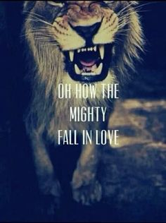 The Mighty Fall -Fall Out Boy