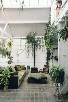 A plant-filled interior at Clapton Tram in London.