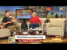 ★Funny & Sexy Tv Moments, Bloopers & Outtakes ★ Caught On Camera ⁄ Funny...
