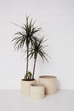 These clever plant pot covers take the hassle out of replanting. Developed to fit over standard plastic plant pot sizes, simple hide the pot your plant arrived in without having to repot it entirely!