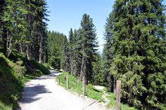 giro delle malghe val di funes geisleralm Country Roads, Mountains, Camper, Gardening, Beautiful Places, Tower, Italy, Caravan, Garten
