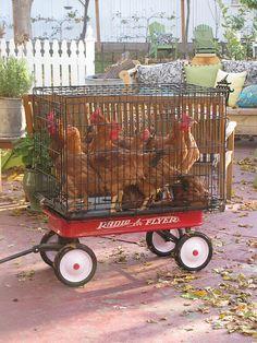 I could so see Kayla Brandon and Bryce doin this at the flee market!!!!! Hahahhaha