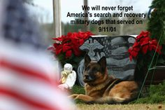 Salute to 9/11 military dogs