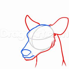 how to draw a deer head step 3