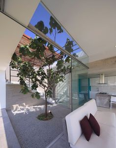 Casa Maple - Picture gallery