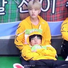 Seventeen Going Seventeen, Seventeen Memes, Seventeen Album, Mingyu Seventeen, Jeonghan, Diecisiete Wonwoo, The8, Diecisiete Memes, Funny Memes