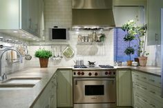 Mint Green Cabinets - Transitional - kitchen - Laura Bohn Design Associates