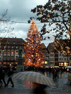 Nouvelle vue du sapin Place Kleber, Strasbourg, 27.12.12