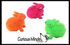 Novelty Toys, Sensory Toys, Egg Hunt, Goodie Bags, Easter Gift, Bunny Rabbit, Easter Eggs, Party Favors, Dinosaur Stuffed Animal