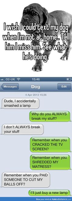 If I could text my dog
