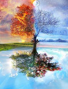 Ohhhh, @Celeste Cheek can Justin paint me this? Four Seasons Tree. Pretty!