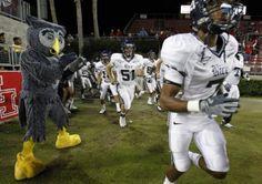 Sammy the Owl, Rice University Owls mascot Space City, Rice University, Missouri City, Live Animals, H Town, Vintage Football, Present Day, College Football, Texas