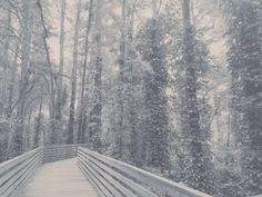 Snow, Outdoor, Outdoors, Outdoor Games, The Great Outdoors, Eyes, Let It Snow