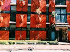 Nov 2nd, 2017 まさに秋晴れ そろそろ紅葉も気になりますが 出勤中微妙に寄り道でパシャり。 ガエタノ ・ ペッシェ (イタリア) 「 オーガニックビルディング大阪 」 1993年 ORGANIC BUILDING OSAKA designed by Gaetano Pesce,1993 Fukumoto