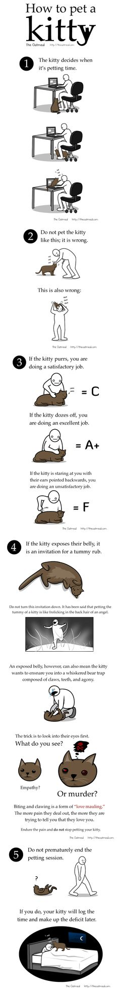 How to pet a kitty. Haha this reminds  me of my dad and our cats!