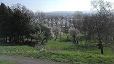 Brandon Hill Nature Park, Bristol