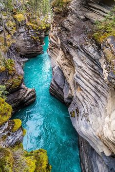 Johnston Canyon in Banff National Park / Canada (by Irving Espinosa).