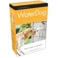 Automatic Outdoor Dog Water Fountain