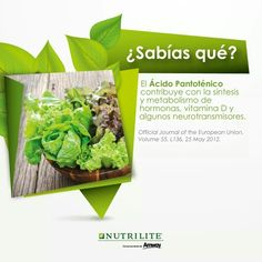 Nutrilite, Herbs, Metabolism, Amway Products, Vitamin D, Did You Know, Health, Herb, Medicinal Plants