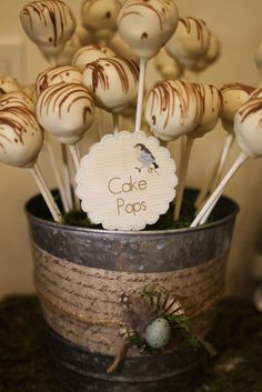 pinning bc of the idea to put the cake pops in buckets!!!!!  GRRRReat idea for Tasha's wedding....no stand required