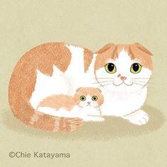Cats works - Chie Katayama Illustration Cat Drawing, Big Eyes, Iphone Wallpaper, Teddy Bear, Wall Art, Cat Illustrations, Drawings, Projects, Cat Cat