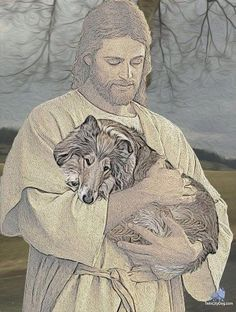 Jesus holding a Sheltie.  This is how I like to picture Chloe now that she has gone on to Heaven.