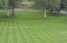 Nordic Lawns | The most reliable lawn service company since 1989