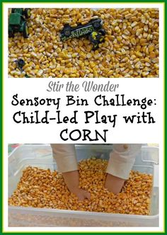 Sensory Bin Challenge: Child-led Play with Corn | Stir the Wonder #sensoryplay #childled