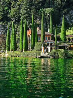 Green Cypress trees and reflections by The Villa, Lake Como, Italy