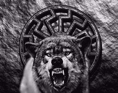 Wolf und Schwarze Sonne !